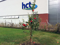 Commercial Landscaping in Hereford from HEC