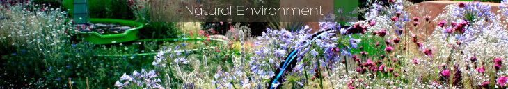 HEC Natural Environment Header